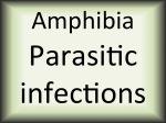 Amphibia parasitic diseases