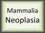 mammalia-neoplasia
