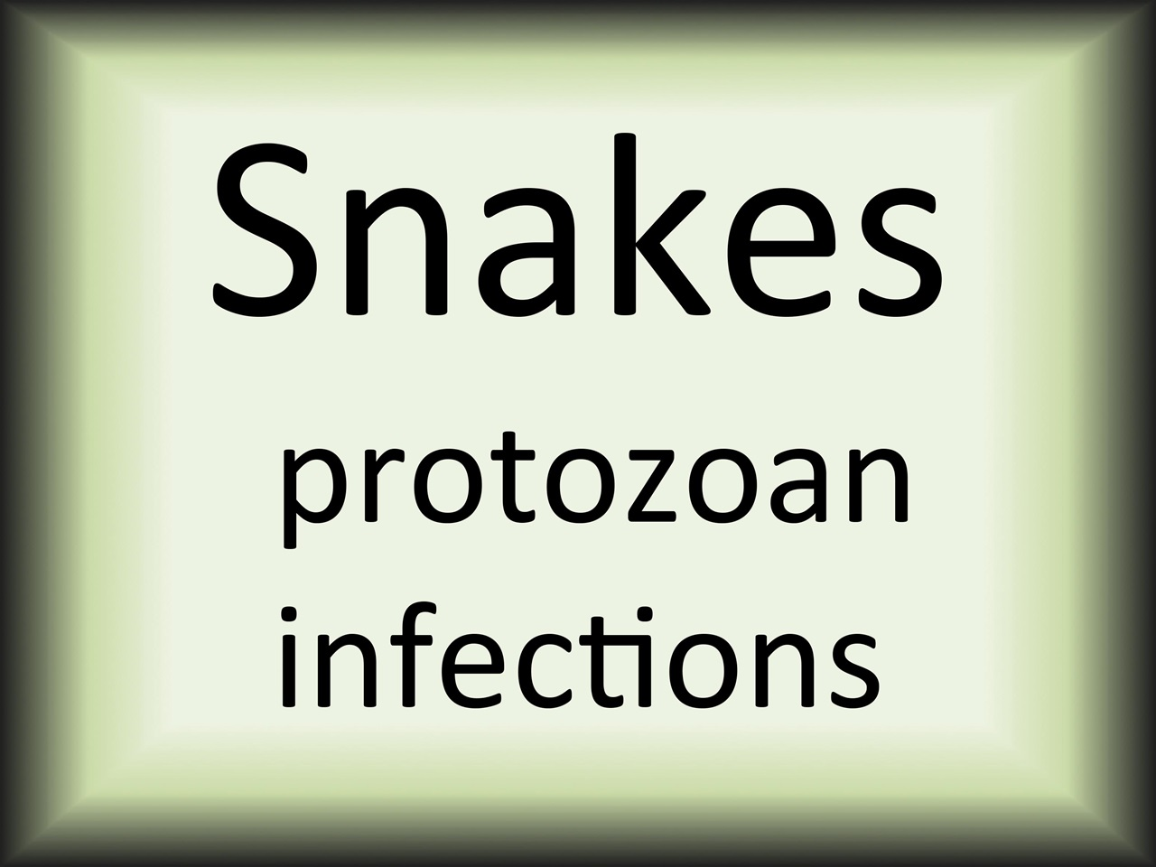 Snakes protozoan inf