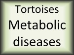 Tortoises metabolic diseases