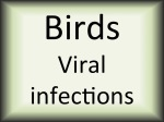 Birds viral infections