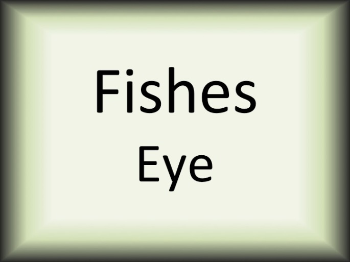 Fishes Eye